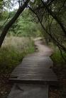 """Das gesamte Camp ist sehr liebevoll aufgebaut und eingerichtet. Diese schöne Holzbrücke durch den Sumpf heißt """"Puffotter-Pfad"""""""