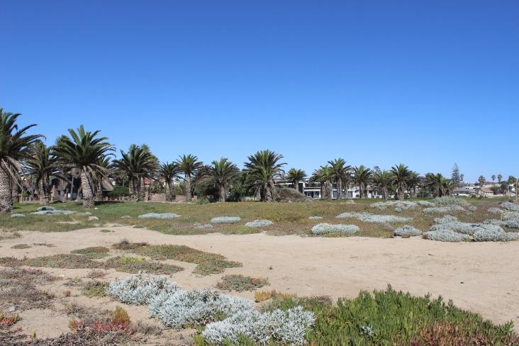 """Aber neben all diesen historischen """"Sehenswürdigkeiten"""" hat Swakop auch jede Menge schönen Strand zur Erholung zu bieten. Leider ist das Wasser viel zu kalt, um wirklich schwimmen zu gehen."""